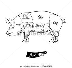 American cuts of pork. Vintage typographic hand-drawn butcher cuts scheme - stock photo
