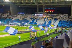 Com a alma que pedroto ensinou! Fc Porto, Football Soccer, Portuguese, Basketball Court, Good Photos, Tatoo