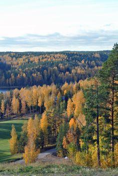 Haltia Luontokeskus Espoossa