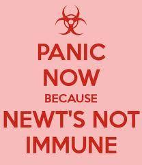 Newt D: