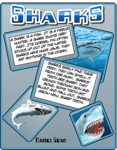 We should save this for Shark Week! But we can't help it. Check out this info-comic about sharks.