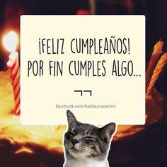 Cumplir Birthday Wishes, Happy Birthday, Mr Cat, Funny Quotes, Funny Memes, Happy B Day, Good Jokes, True Facts, Romantic Quotes