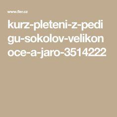 kurz-pleteni-z-pedigu-sokolov-velikonoce-a-jaro-3514222
