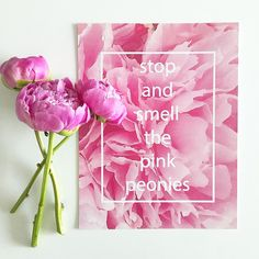 "Stop and Smell the Pink Peonies - 8.5"" x 11"" Print"