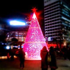 Kenichi Kamio - Roppongi Christmas Tree from Today's piano piece  Dec.25th,2014  「六本木のクリスマスツリー」  静かに色が変わってゆくツリー。  美しい色合いが幻想的。