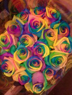 Har du nogensinde set roser i disse pang- farver?