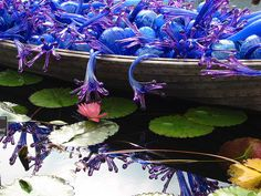 Chihuly NY Botanical Garden | Flickr - Photo Sharing!