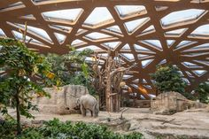 Built by Markus Schietsch Architekten in Zürich, Switzerland with date 2014. Images by Dominique Wehrli. The new elephant house in Zürich Zoo is embedded in the extensive landscape of the newly designed Kaeng Krachan Eleph...