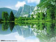 Feed Pictures - Best Best Natural Desktop Wallpapers Background ...