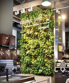 Vertical garden by Nedlaw Group
