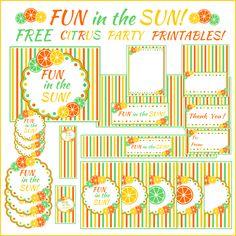 Fun in the Sun Free Printable