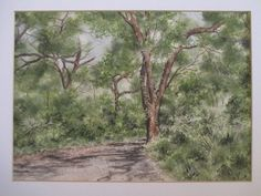 Jan Radford Vintage Plein Air Wooded Path Landscape Signed Watercolor Painting | eBay