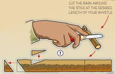 Make a willow whistle for the cub scout bear claws adventure