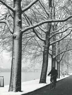 Man biking along the river Amstel in Amsterdam, 1956. Photo Kees Scherer.