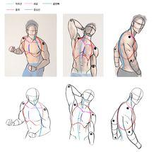 Human Anatomy Drawing, Human Figure Drawing, Anatomy Sketches, Drawing Sketches, Drawings, Body Reference Drawing, Art Reference Poses, Art Poses, Drawing Poses