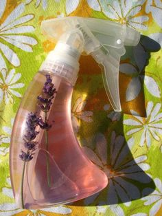 Make your own flea repellent.