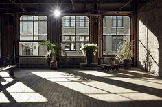 Apartment + house plants + wooden floor + brick walls + windows