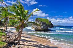 Bathsheeba Beach, Barbados, Caribbean - photo by David Koester