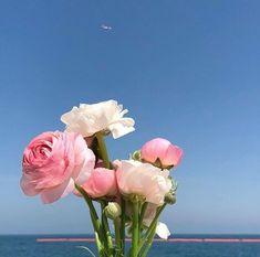 ꒰ 💌 ꒱┊𝚙𝚒𝚗𝚝𝚎𝚛𝚎𝚜𝚝: 𝚘𝚔𝚊𝚢𝚢𝚟𝚒𝚟 Buy Flowers, Pretty Flowers, Hopeless Fountain Kingdom, Plant Wallpaper, Plants Are Friends, Flower Making, Flower Aesthetic, Daydream, Planting Flowers