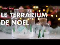 Aquarium Terrarium, Wine Glass, Diy, Tableware, Dinnerware, Bricolage, Tablewares, Do It Yourself, Dishes