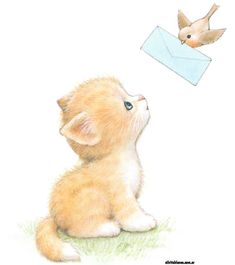 Kitty by Ruth Morehead Cute Animal Illustration, Cute Animal Drawings, Illustration Art, Illustrations, Cute Images, Cute Pictures, Baby Animals, Cute Animals, Kitten Drawing