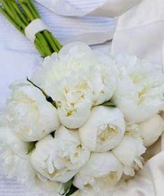 brudebuket hvide bonderoser