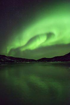 Peter Spencer - Somerset, UK based photographer. #nature