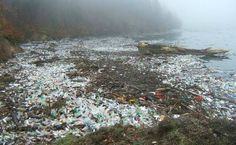 Just stop using plastic!--The Big Awful Truth About Biodegradable Plastics