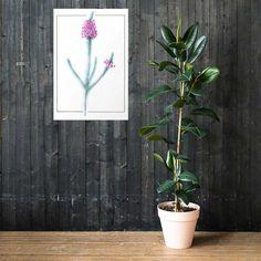 Lámina Botánica Erica | Cosa Bonita | Láminas para cuadros Minimalist Poster, Minimalist Art, Evil Eye Art, Plant Art, Room Posters, Modern Art Prints, Digital Wall, Poster Making, Retro