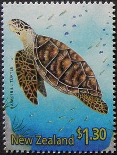 """Issued of February Hawksbill Turtle """"Eretmochelys imbricata"""". Carey's carets. (New Zealand) (Year of the Snake Mi:NZ 2389 Lizards, Snakes, Year Of The Snake, Vintage Stamps, Reptiles And Amphibians, Frogs, Turtles, New Zealand, Insects"""