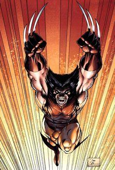 HOUSE of COMICS — houseofcomics1: Wolverine by Jim Lee