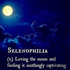 So many thoughts go through my mind while gazing at the moon. Absolutely love to moon watch! Unusual Words, Rare Words, New Words, Cool Words, Word Of The Day, Moon Goddess, Word Porn, Beautiful Words, Beautiful Moon