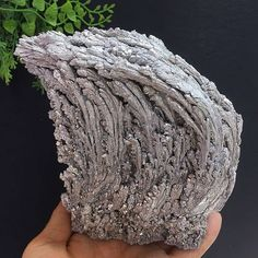 607g Rare Silvery Magnesium Ore Wave Shape Cluster Mineral Specimen