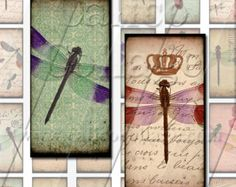 Dragonflies - Instant Download Digital Collage Sheet Printable - 1x2 Domino Tile Size 809