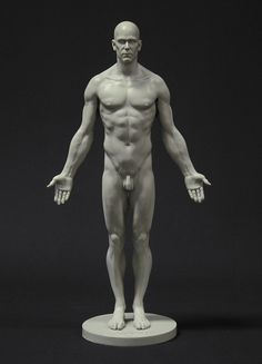 Full skin male reference figure by 3dtotal staff