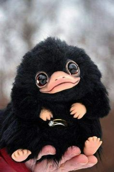 Niffler from Fantastic Beasts and Where to Find Them. Ring (the on that in the p… Niffler from Fantastic Beasts Mundo Harry Potter, Harry Potter World, Harry Potter Beasts, Harry Potter Sweets, Hogwarts, Slytherin, Images Harry Potter, Kawaii, Fantastic Beasts And Where