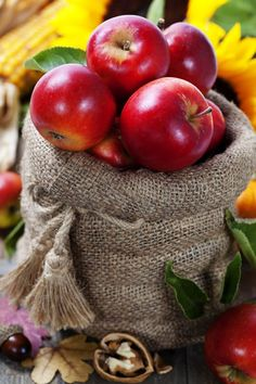 Country Living ~ Apples ~ Fall