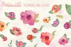 Watercolor Flowers by Angie Makes on Creative Market