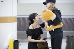Kpop Girl Groups, Korean Girl Groups, Kpop Girls, Wendy Red Velvet, Red Velvet Irene, Red Valvet, Kang Seulgi, Red Velvet Seulgi, Kim Yerim