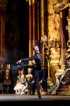 Royal Ballet Principal Vadim Muntagirov in 'Swan Lake' Male Ballet Dancers, Ballet Boys, Ballet Art, Contemporary Dance, Modern Dance, Ballet Dance Photography, Ballet Images, Bolshoi Ballet, Alvin Ailey