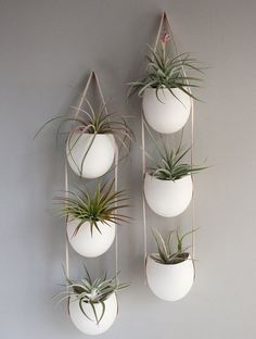 3 Drop Porcelain and Leather Hanging Container Garden