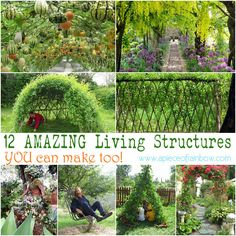 Bean teepee, willow den, gourd tunnel...  12 Amazing Living Structures You Can Create! | A Piece of Rainbow