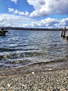 Mercer Island, WA (Photo by Risa Jenner)