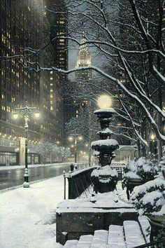 snowy in new york, new york | via Christmas is the Most Wonderful Time of the Year