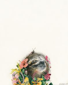 Adam Batchelor - Fauna