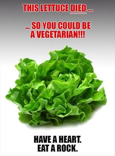 this-lettuce-died-for-you photo