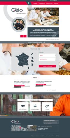 Les Geiq - Site web