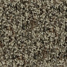 STAINMASTER�Active Family Austere Camden Frieze Indoor Carpet