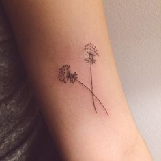 Tattoos by Olivia Harrison - crossed dandelion tattoo for erica