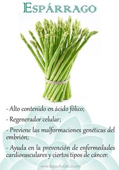 Alto contenido en ácido fólico; regenerador celular; previene las malformaciones genéticas del embrión; ayuda en la prevención de enfermedades cardiovasculares y ciertos tipos de cáncer.